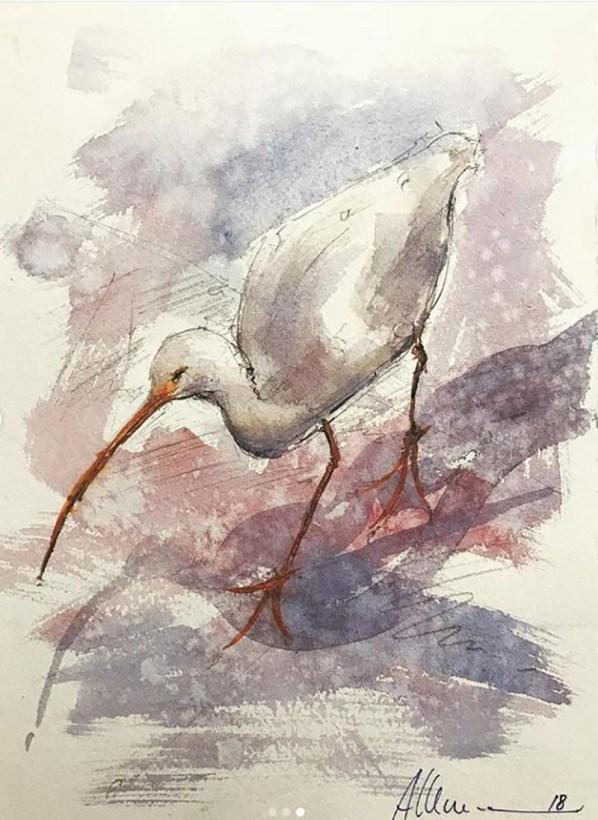 White Ibis 1 Watercolor By Al Kline - Doodlewash