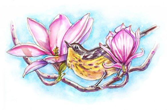 Day 10 - Magnolia Warbler And Flowers Blooms - Doodlewash