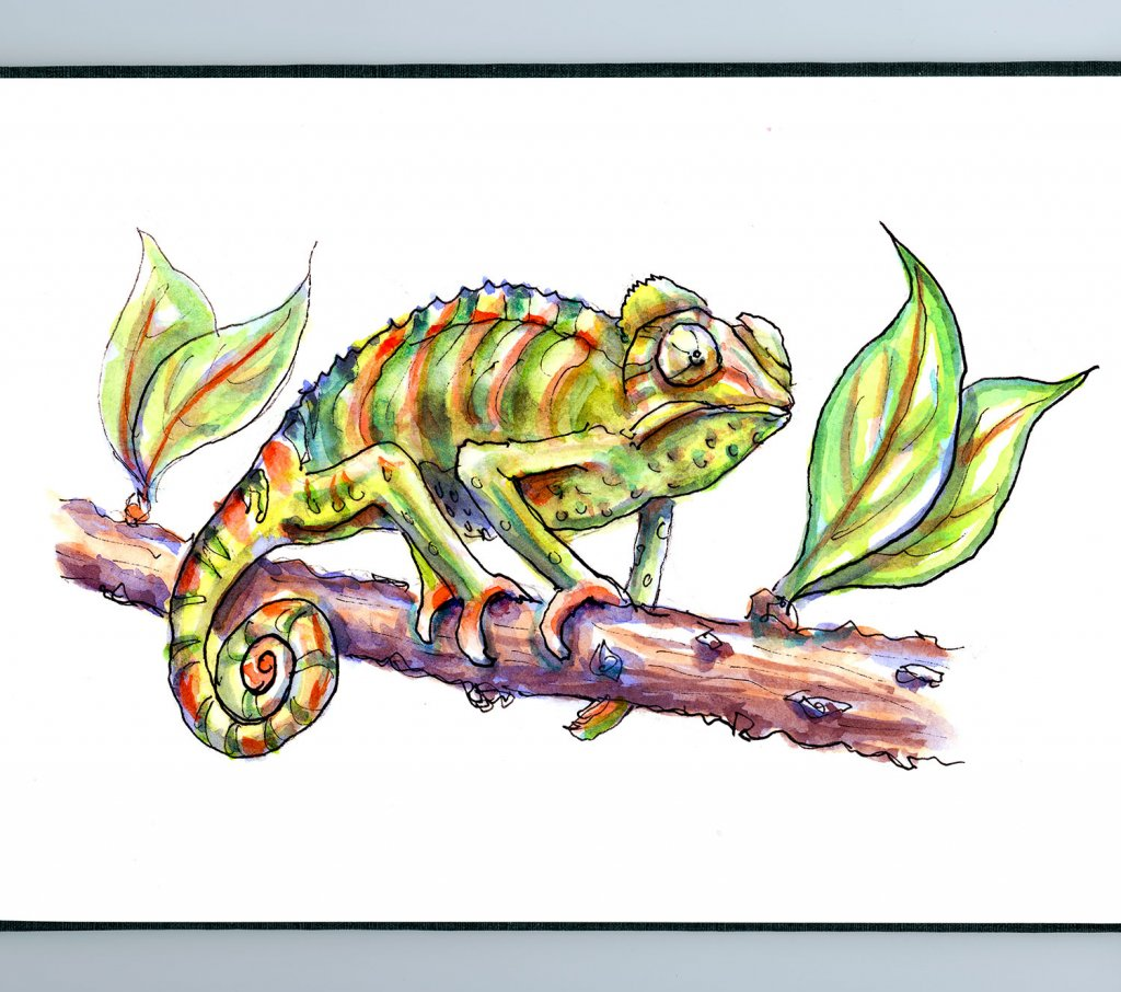 Day 11 - Chameleon Watercolor - Sketchbook Detail - Doodlewash