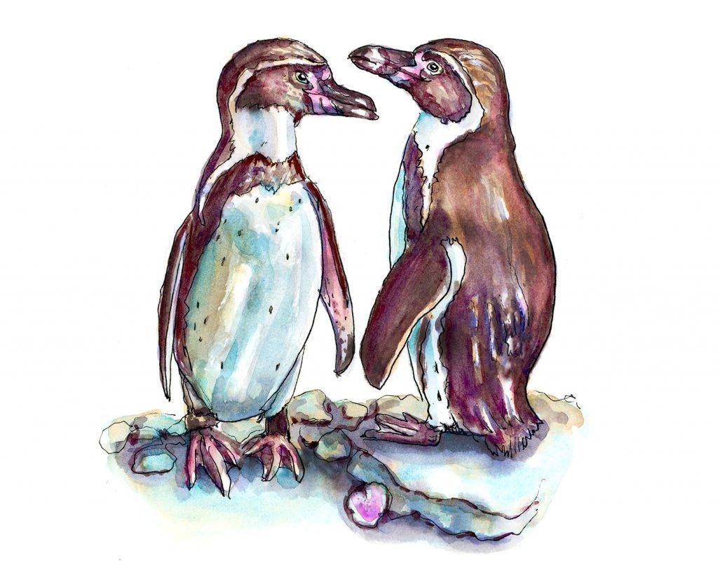 Day 14 - Penguins In Love Watercolor - Doodlewash