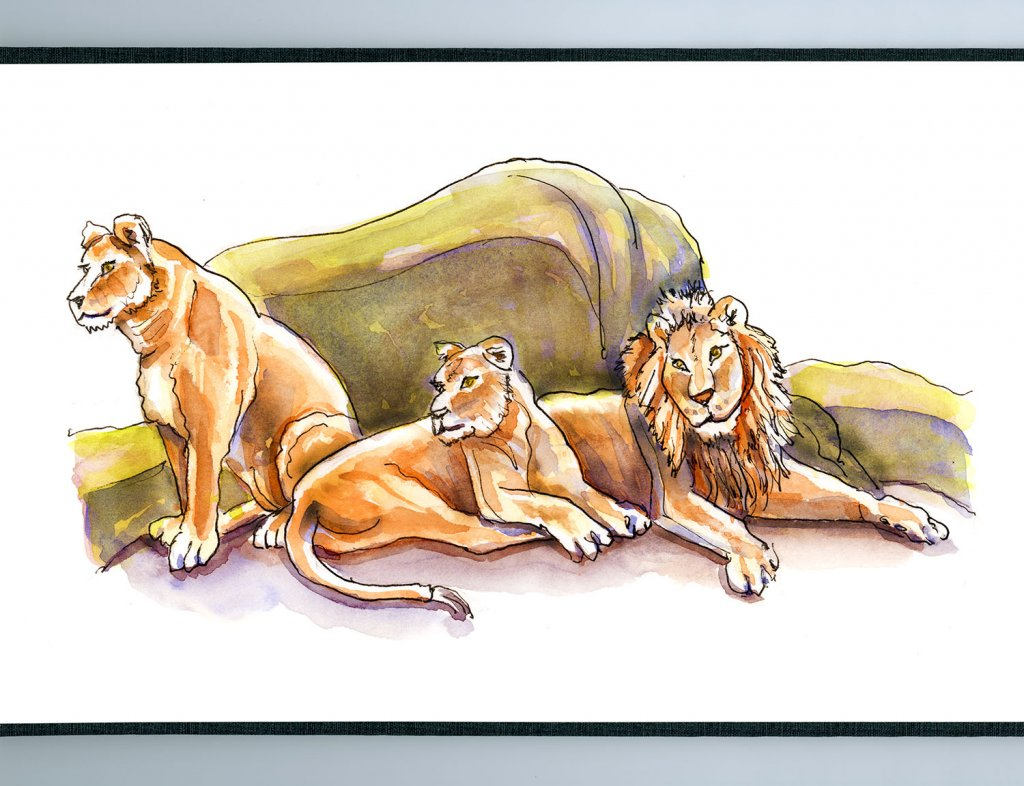 Lion Pride Watercolor - Doodlewash