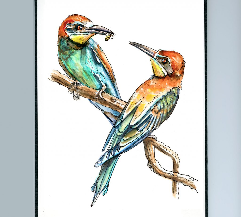 Day 8 - European Bee-Eater Bird Watercolor - Sketchbook Detail - Doodlewash