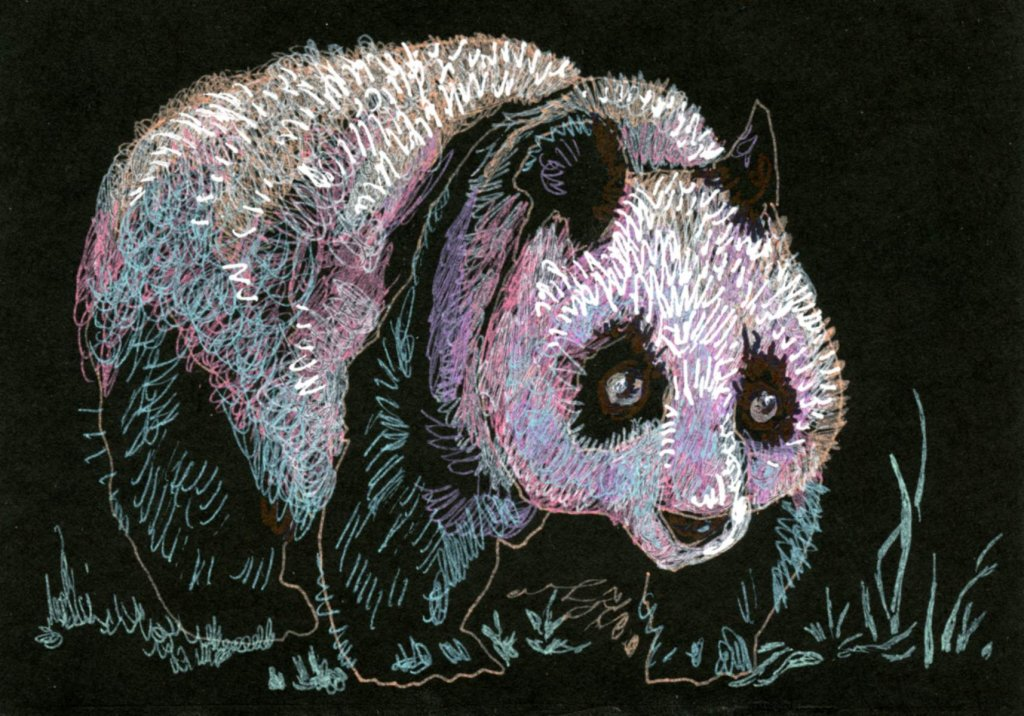 Giant Panda: Did you know that the scientific name of the giant panda is Ailuropoda melanoleuca,? It