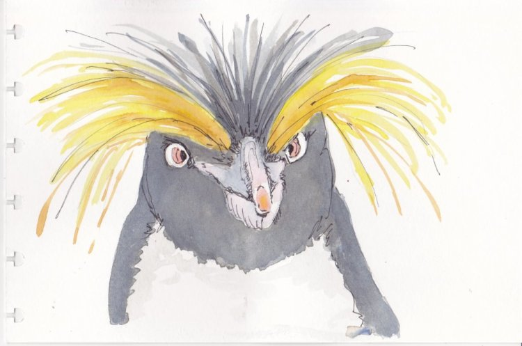 Day 14-Mad, Bad Hair Day Penguin. MadPenguin