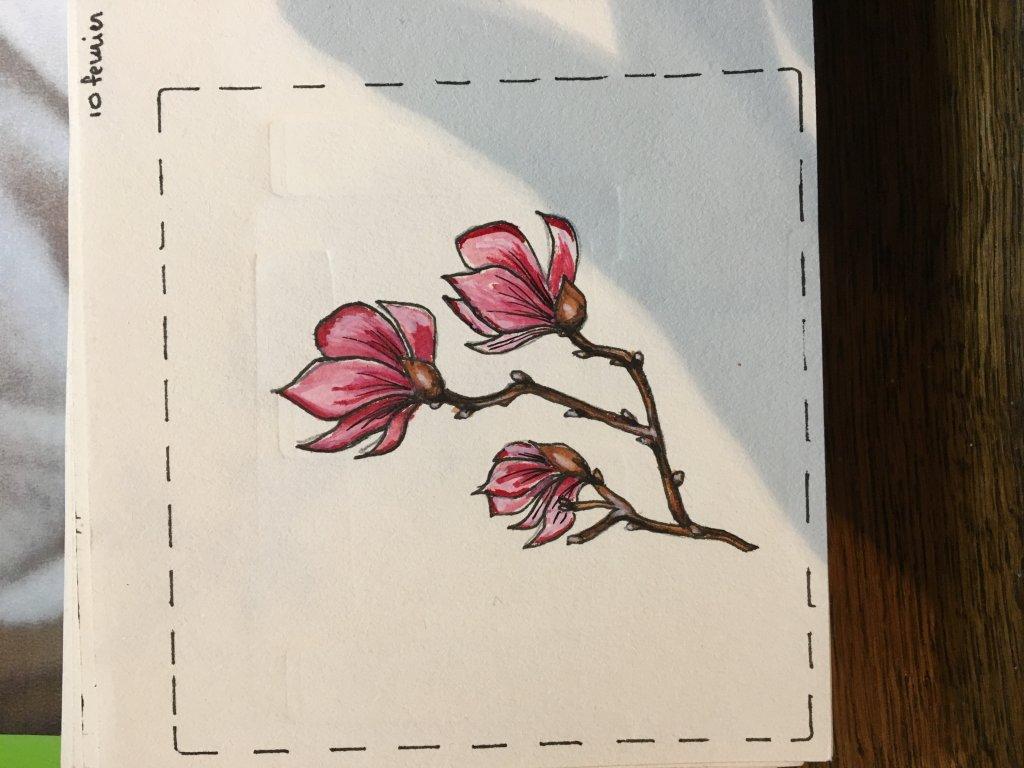 Défi 10 février # magnolia image