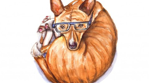 Day 11 - Phineas Basenji Watercolor Glasses - Doodlewash