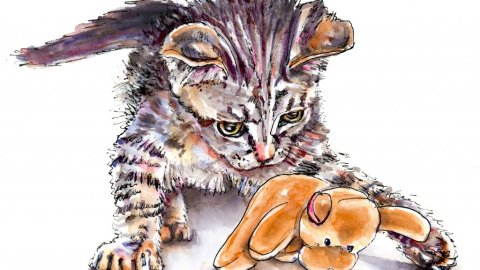 Day 21 - Cat Pet Portrait Watercolor Illustration - Doodlewash