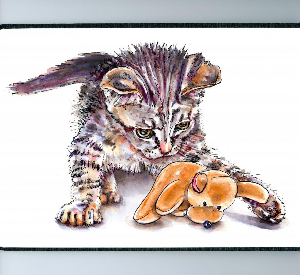 Cat Pet Portrait Watercolor Illustration - Doodlewash