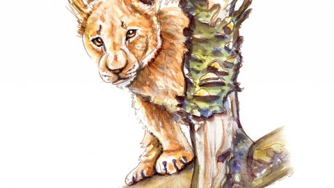 Day 3 - Lion Cub Watercolor African Safari - Doodlewash