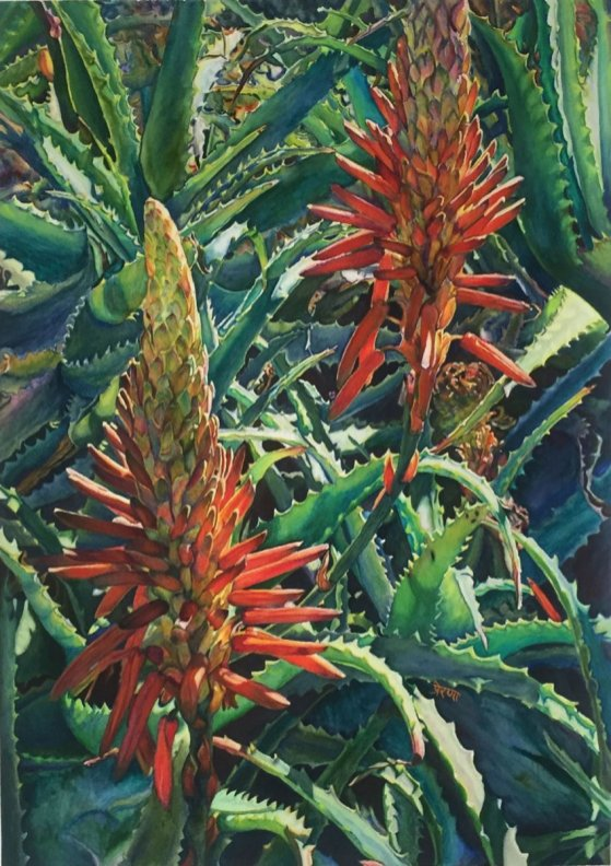 Hedgehog Aloe Blooms Watercolor Painting by Prerana Kulkarni - Doodlewash