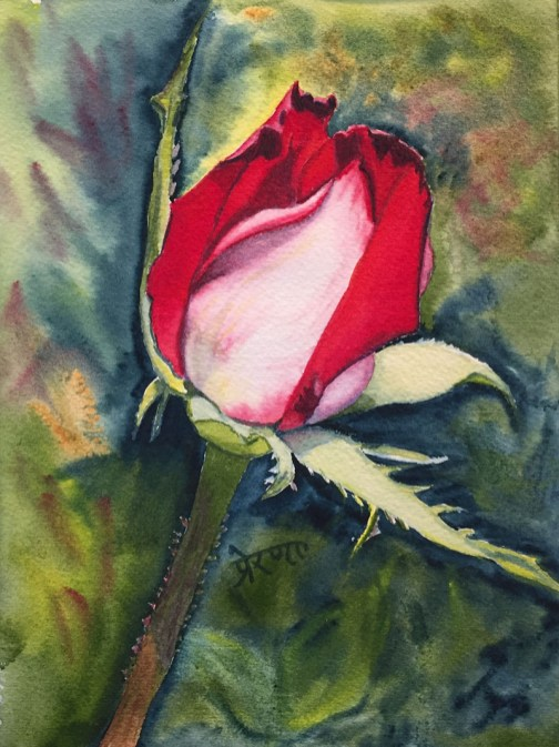 Rosebud Watercolor Painting by Prerana Kulkarni - Doodlewash