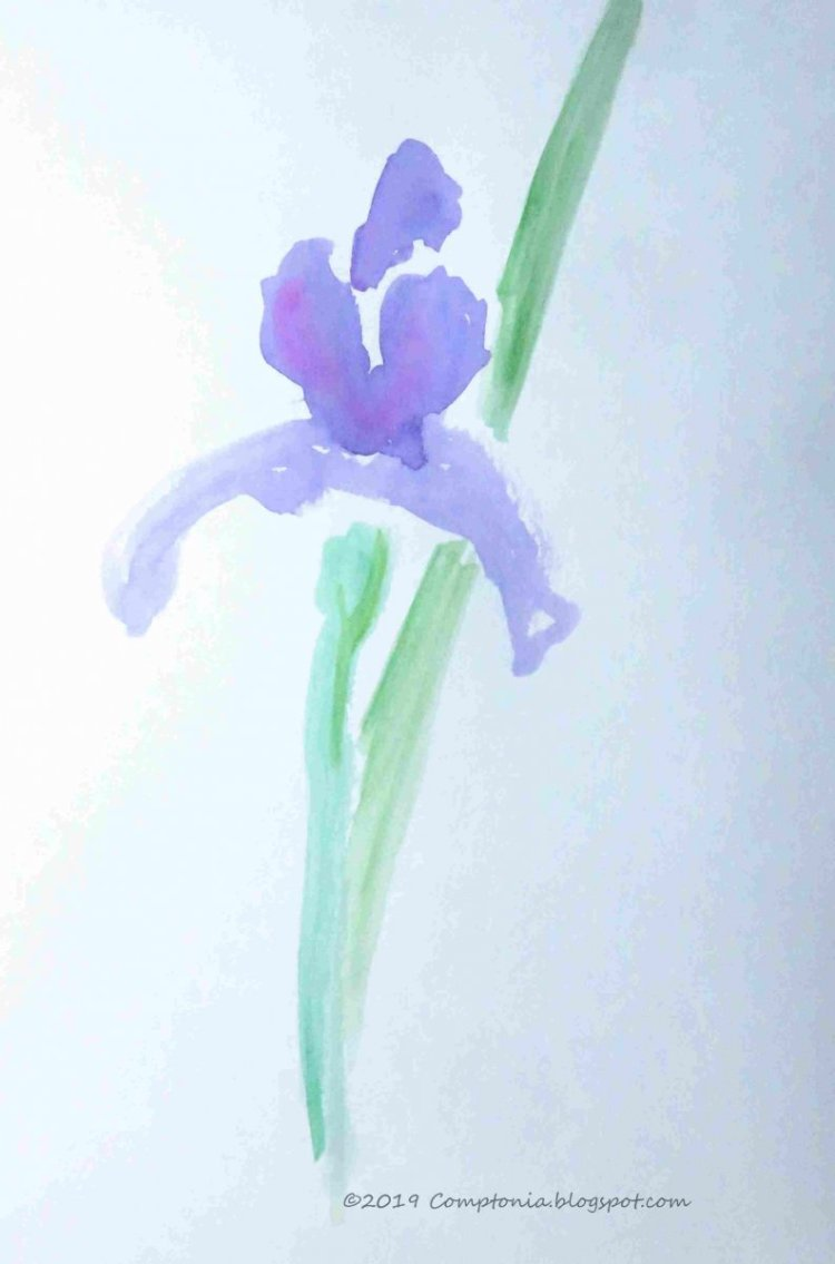 another iris painting mar11c 435