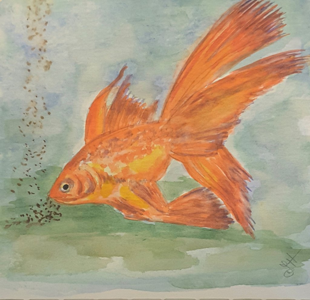 "#doodlewash2019 #WorldWatercolorGroup April challenge ""Goldfish"" Windsor Newton and DaVi"