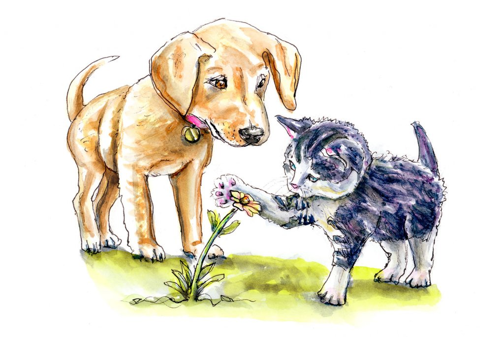 Day 11 - Dog And Cat Illustration Watercolor - Doodlewash