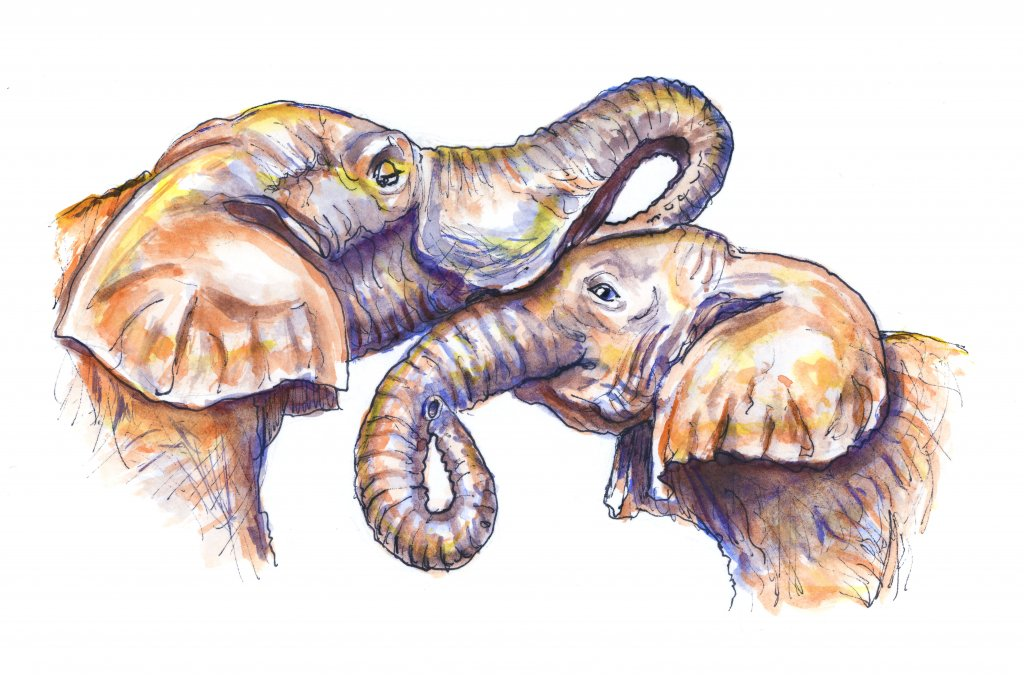 Day 16 - Elephant Mother Child Illustration Watercolor - Doodlewash
