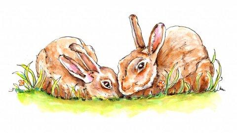 Day 21 - Bunny Easter Illustration - Doodlewash