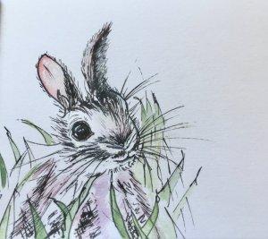 21/04/2019 Bunnies IMG_3916