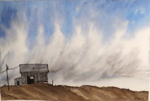 My hubby saw this picture from a tutorial by Peter Sheeler on YT. I will try again soon. W&N pro