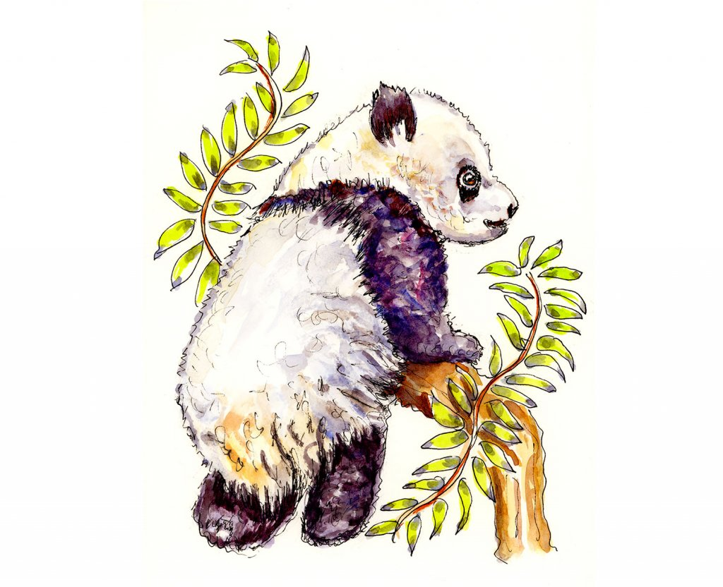 Panda Baby Watercolor Illustration