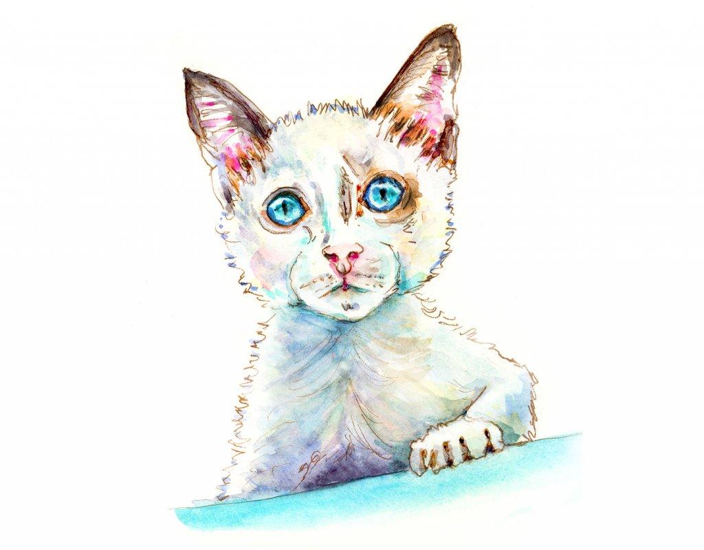 White Cat Watercolor Illustration - Doodlewash