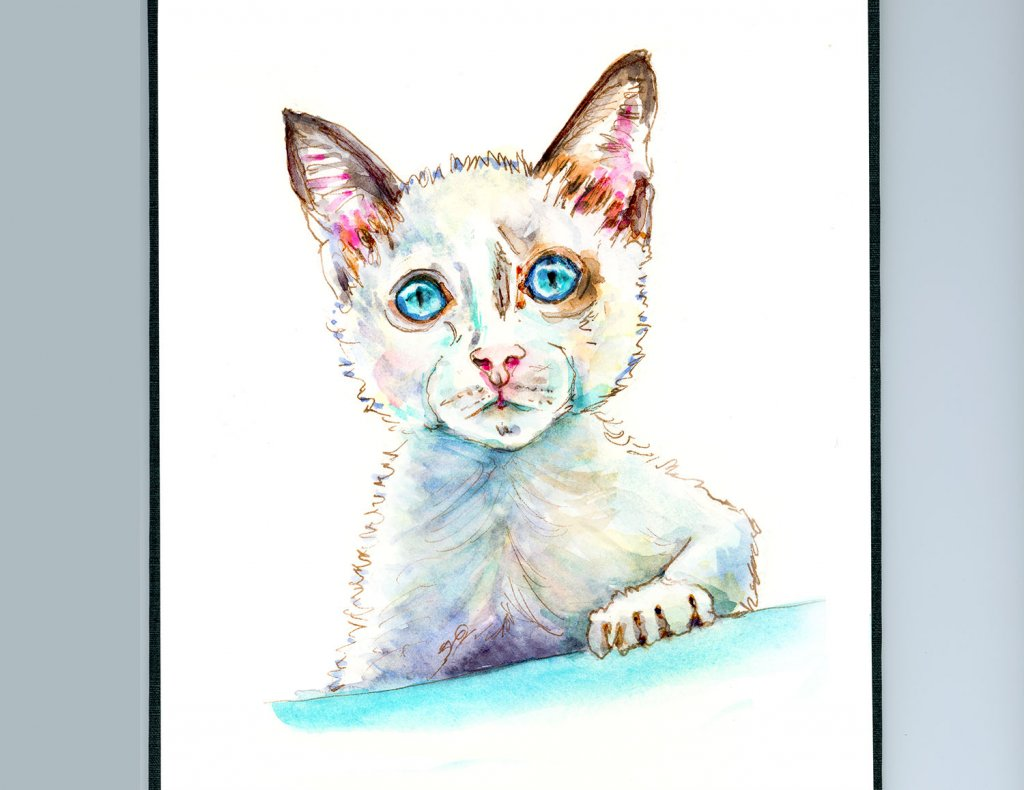 Day 25 - White Cat Watercolor Illustration_IG