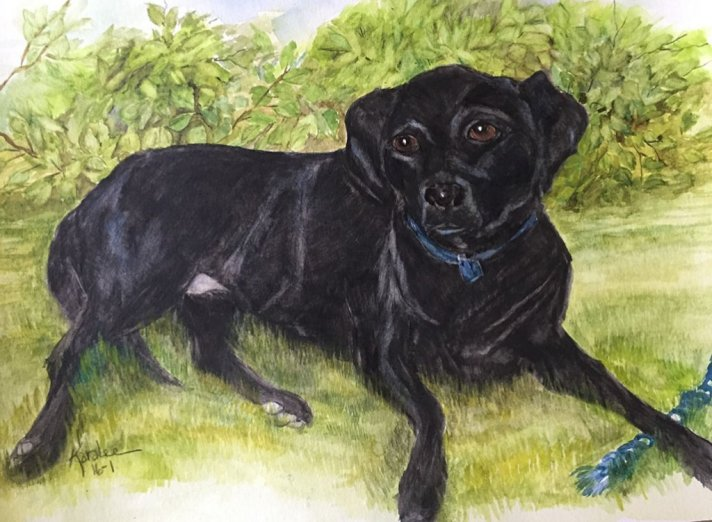 Dog Portrait Watercolor Painting by Karalee Hammes - Doodlewash