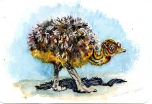 Ostrich in Rose-Colored Glasses-Ostriches don't actually put their heads in the sand, but if y