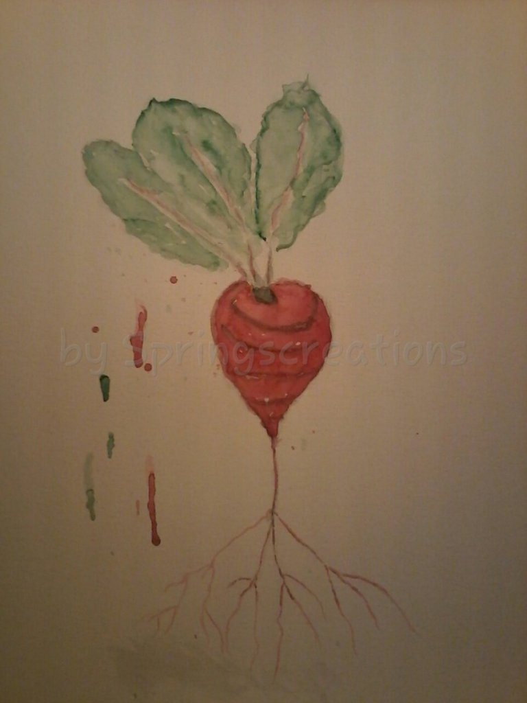 """Wow the month is over and for the daily prompt of beet red had to get with the """"beet"""" I"""