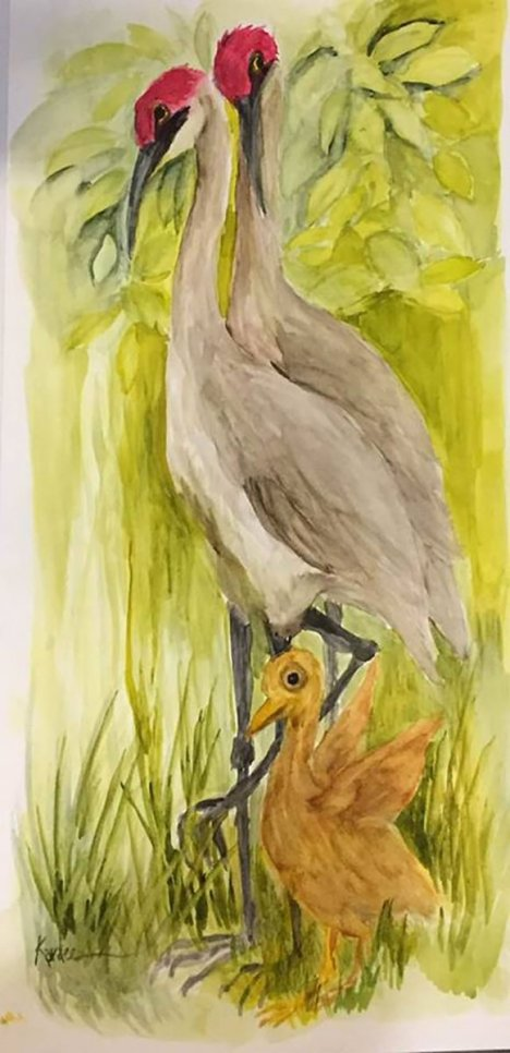 Sandhill Watercolor Painting by Karalee Hammes - Doodlewash