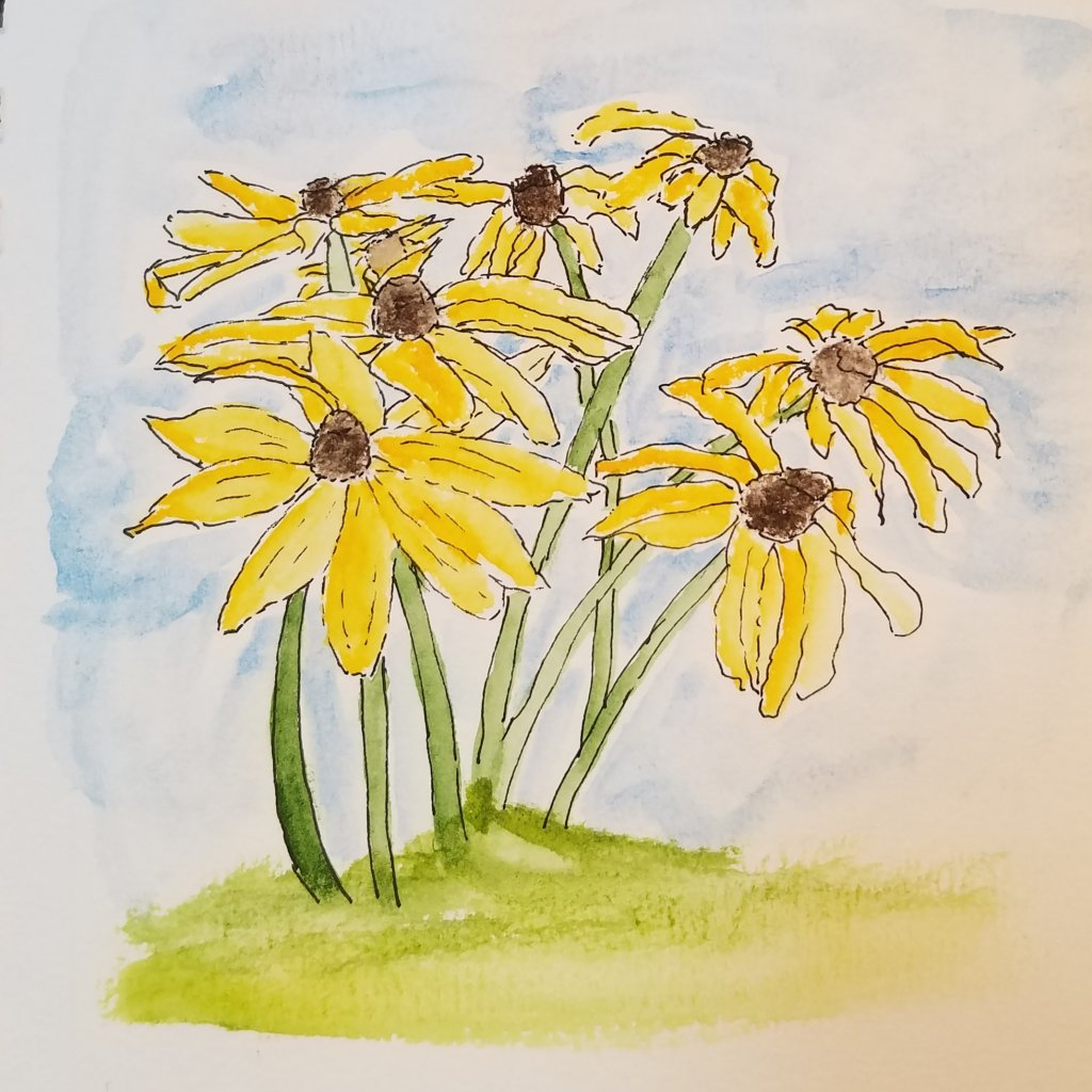 Black-eyed susans along with buttercups and daisies are among my childhood memories. Also painted tr