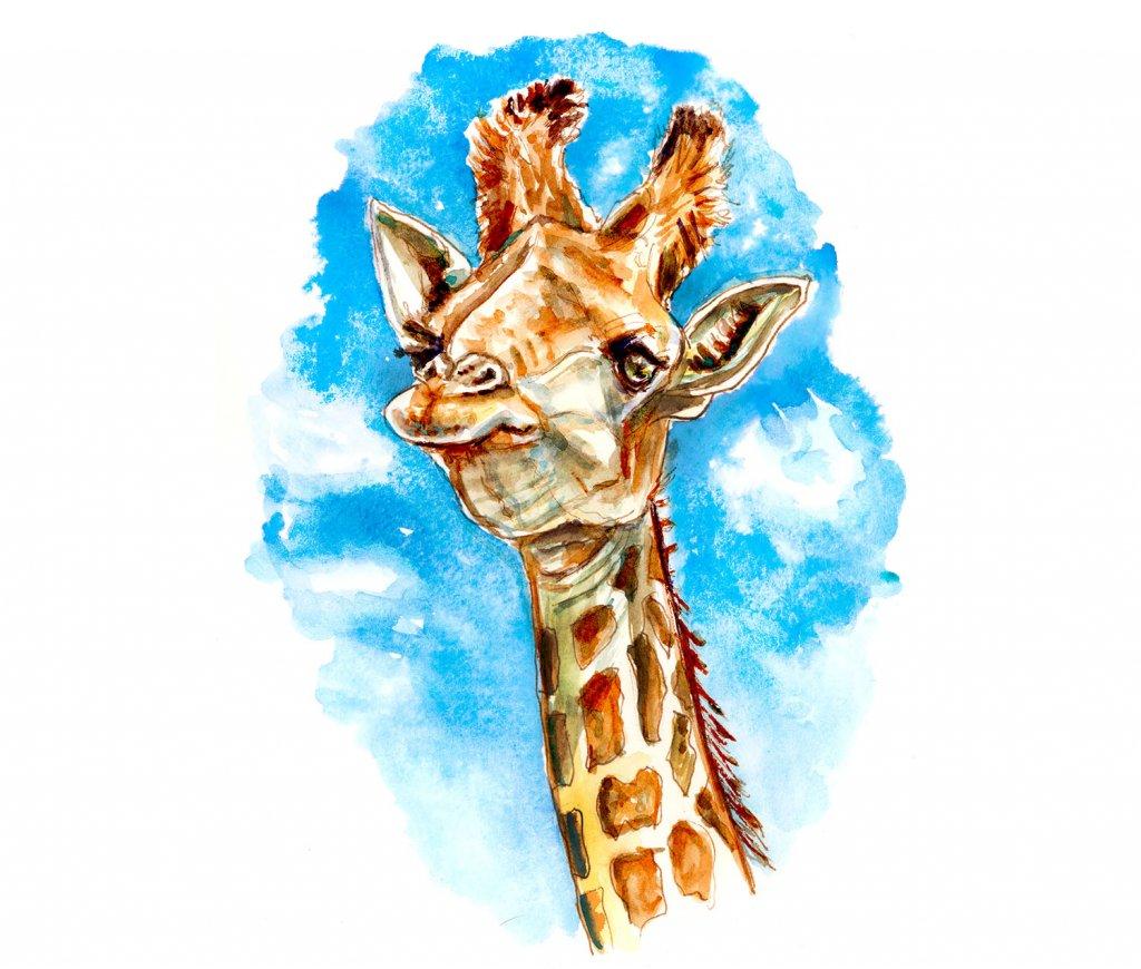 Giraffe Blue Sky Watercolor Illustration