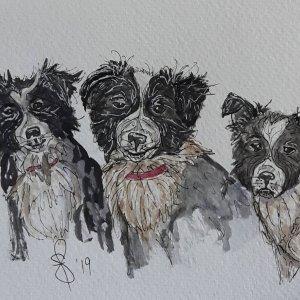 """Trouble"" Artist Susan Feniak. QoR watercolor on Fabriano paper. IMG_20190619_071444_662"