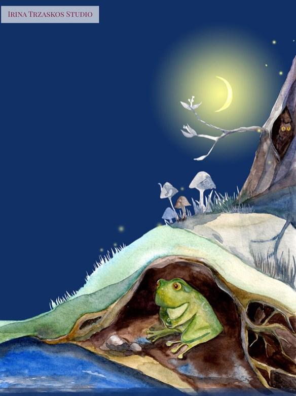 Frog Children's Book Watercolor Illustration by Irina Trzaskos - Doodlewash