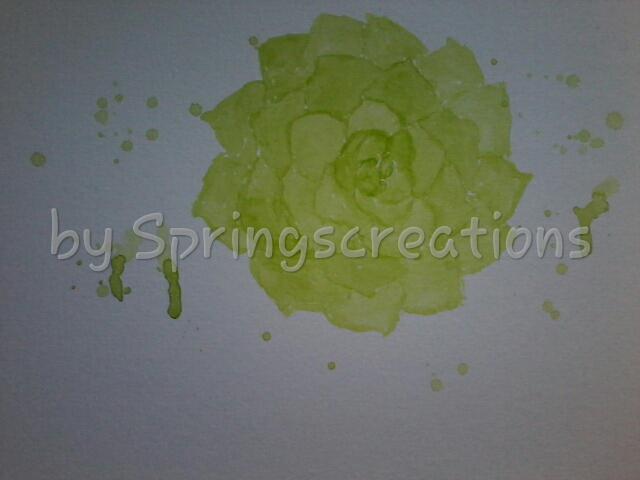 prompt green… succulent PSX_20190609_094724