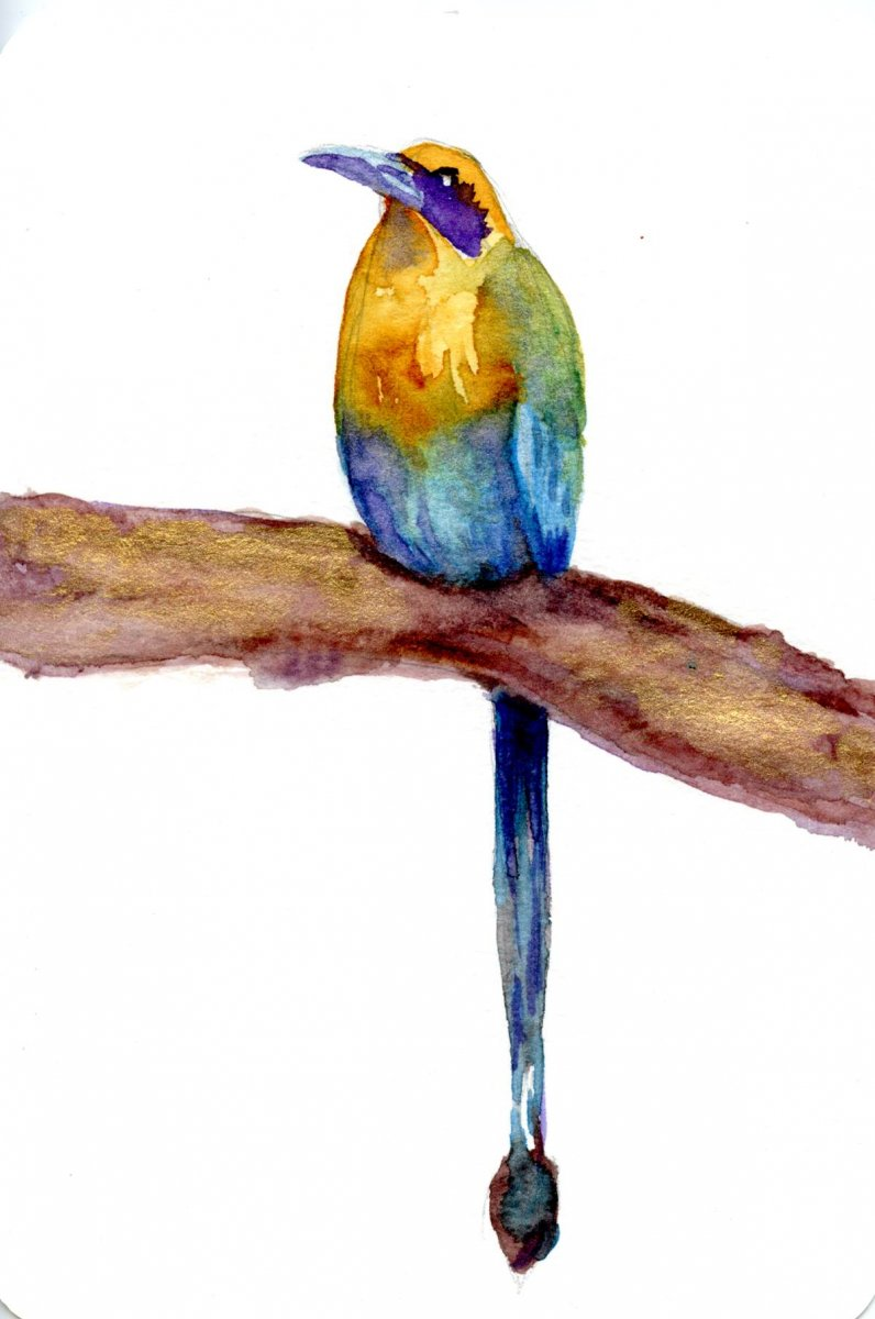 Bird Watercolor Painting by Sandra Strait