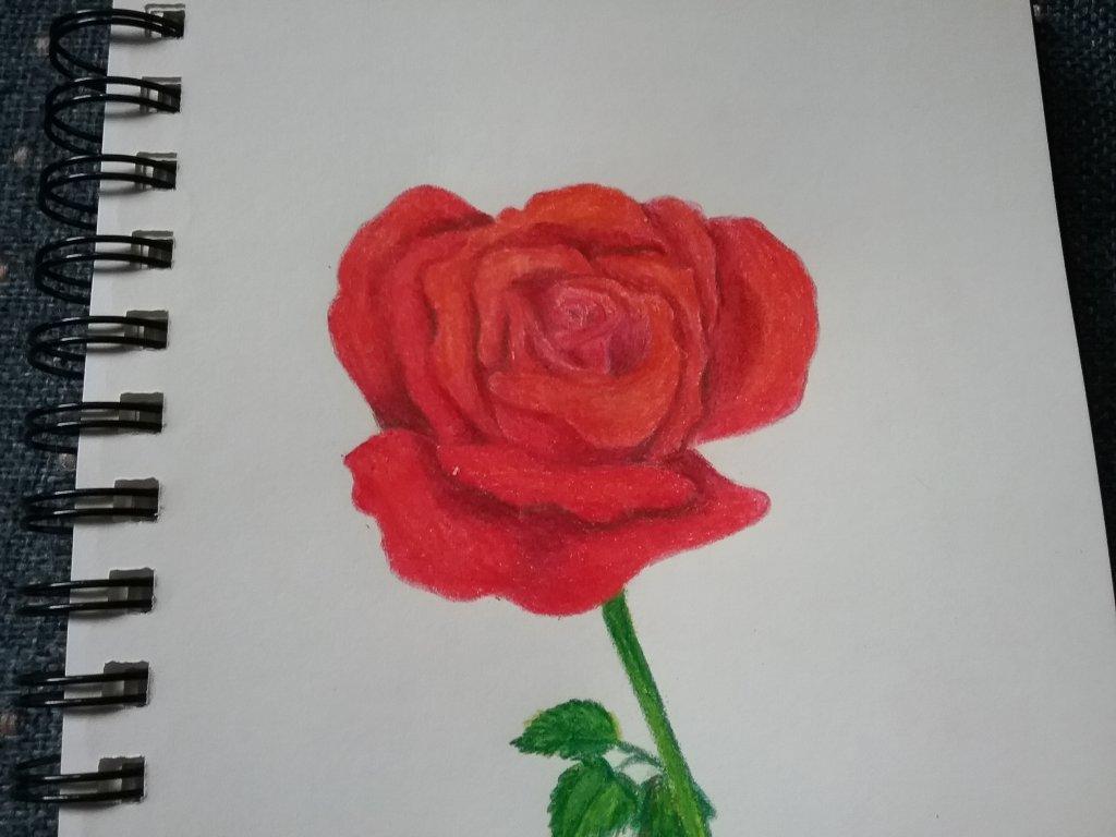 From my sketchbook. 20190613_120930