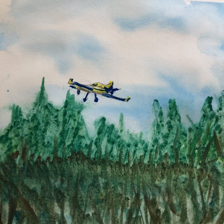 #WorldWatercolorMonth Day 8: Flying High 779CE51D-E2C4-489A-873A-1FC2D1DED201