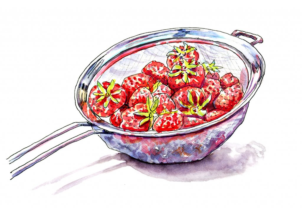 Strawberries Metal Colander Illustration