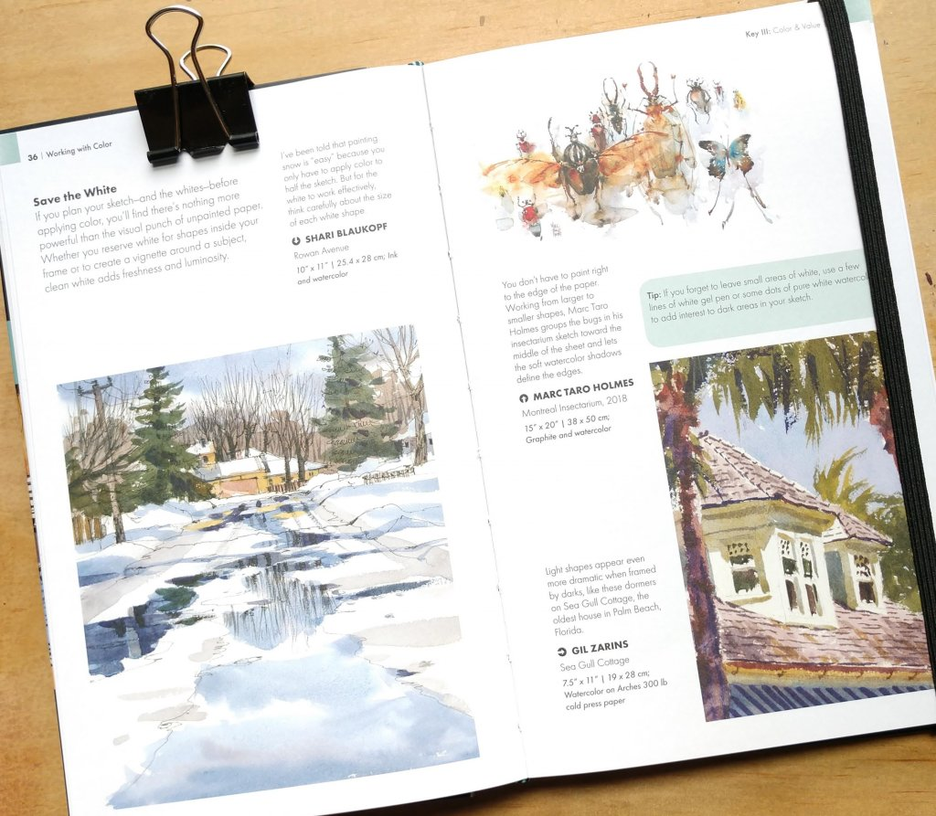 Watercolor tips from book by Shari Blaukopf
