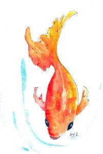 8/20/19 Fish 8.20.19 Fish img036