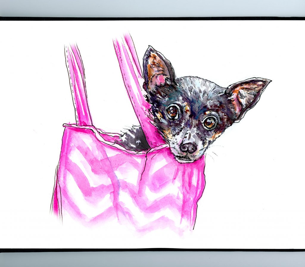Chihuahua Bag Illustration Sketchbook Detail