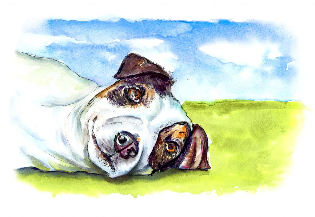 Jack Russell Terrier Watercolor Illustration