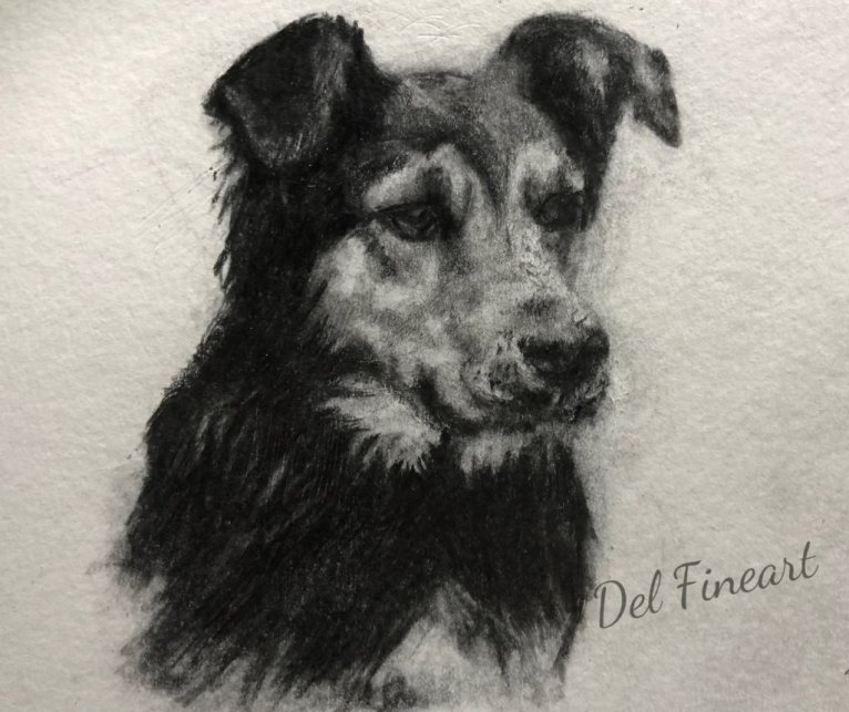 Dee Hunterway Pencil Drawing by Del Fineart
