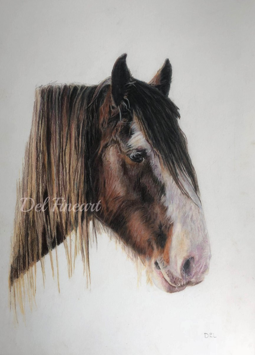 Duke Colored Pencil by Del Fineart