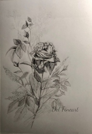 Rose Drawing for watercolor by Del Fineart