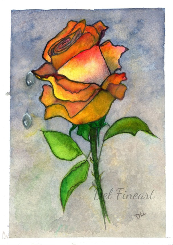 Rose Water Colour by Del Fineart
