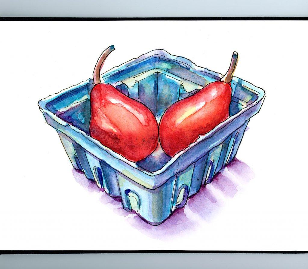 Red Starkrimson Pears Watercolor Illustration Sketchbook Detail