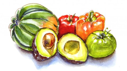 Vegetables Are Fruits Berries Watercolor Illustration