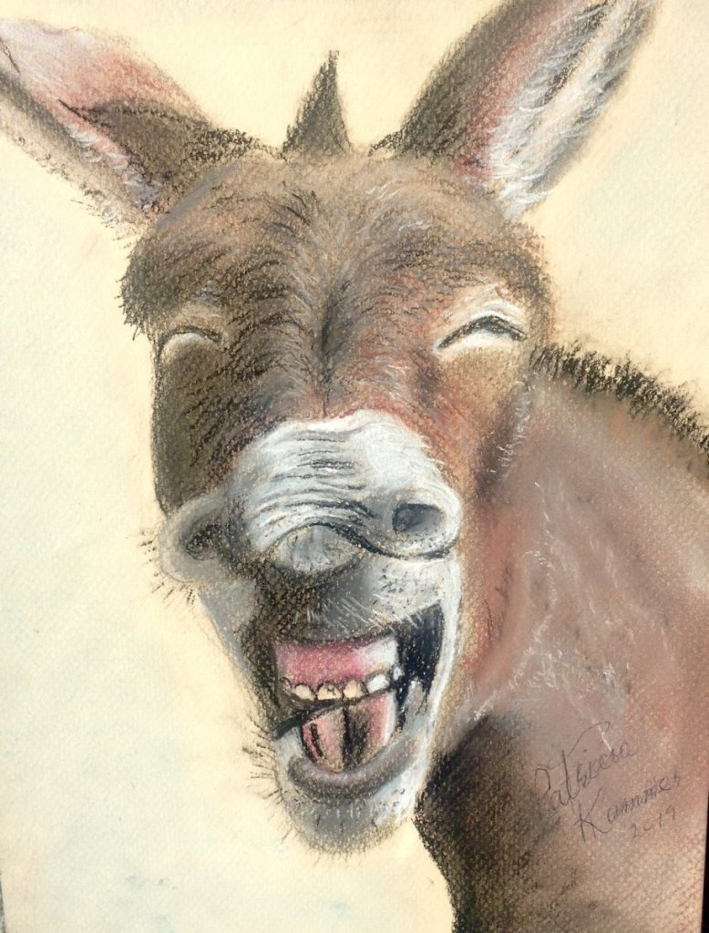 This is Dunkin Donkey. He is created with soft pastels. He makes me smile everyday. Dukin Donkey pas