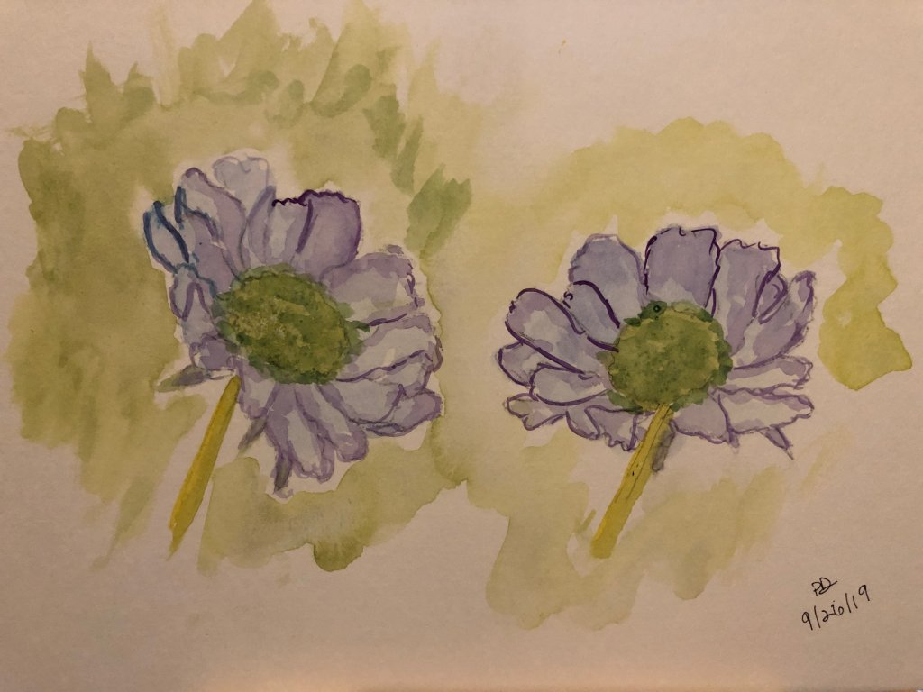 """My take on a tutorial from """"ready to paint in 30 minutes:flowers in watercolor"""" by ann m"""